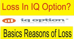 Reason Of Loss In IQ Option Trading