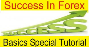 Definition of success in Forex Trading By Tani Forex