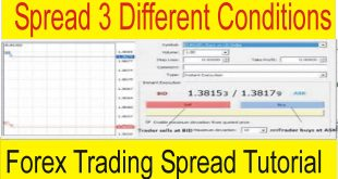 3 Different Conditions of Spread in Forex Trading