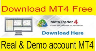 10 Different Brokers MT4 Free Download