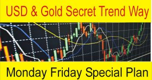 Monday Friday Best USD And Gold Forex Trading Plan
