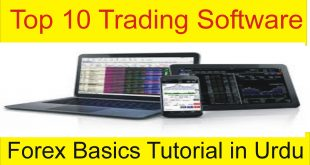 Top 10 Online Trading Software For Beginners