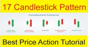 17 Candlestick Pattern | Complete Price Action Tutorial In Urdu and Hindi