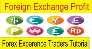 How Much Money can be made From Foreign Exchange trading
