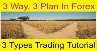 3 Ways, 3 Plan and 3 Different Types Of Traders special message