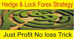 Hedging & Lock Forex Profitable Strategy | 500$ investment daily profit Scalping Trick