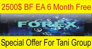 BF Auto Trading Robot | 6 Month Free For Tani Group Traders