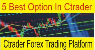 5 Best option in Ctrader Trading platform