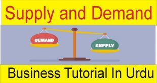 80% Success Business Tutorial Supply And Demand TaniForex