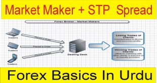 Market Maker, STP Brokers And Spread In Forex Trading Business