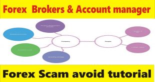 Fake forex brokers